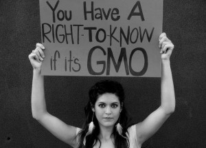 gmo free - right to know