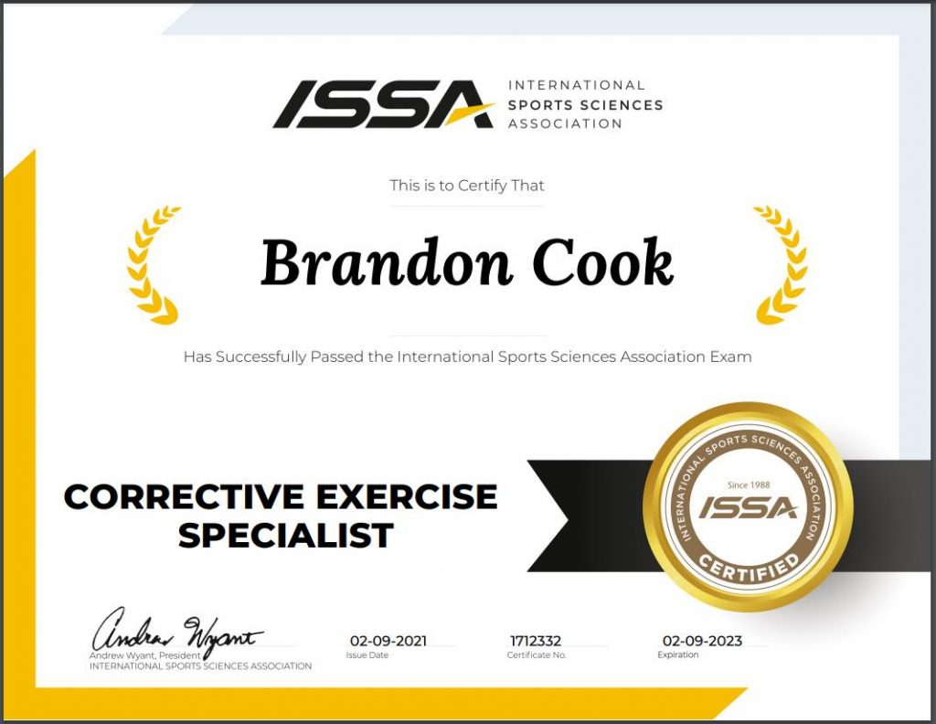 certified corrective exercise specialist